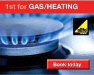 1stfix.com Gas and Heating services