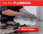 1stfix.com Plumbing services
